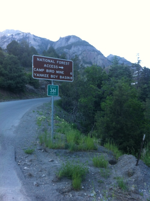 The start of the road to Imogene Pass.